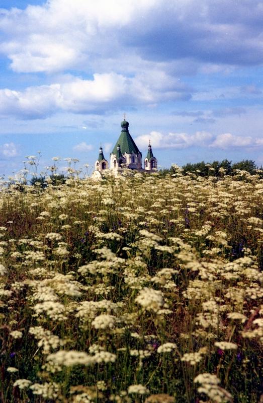 Туры выходного дня на море крым из москвы